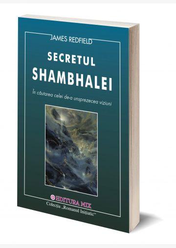 "Coperta 3D a cărții ""A unsprezecea viziune. Secretul Shambhalei"""
